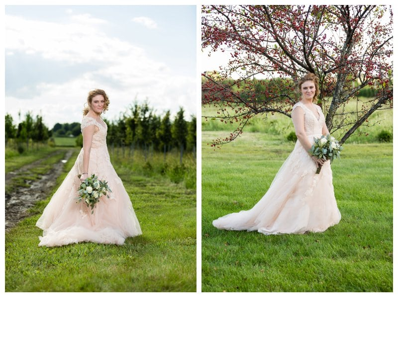 Wedding Dresses Joliet Il : Elisha tyler elwood il backyard wedding