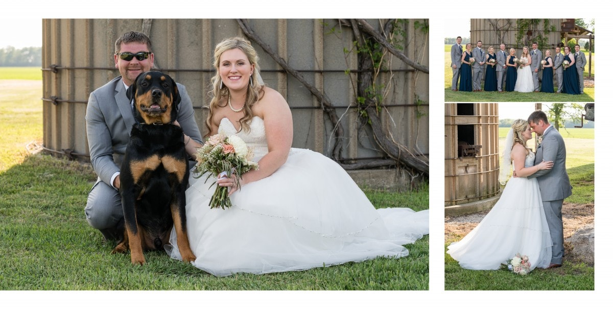 Bloomington Wedding Photographer
